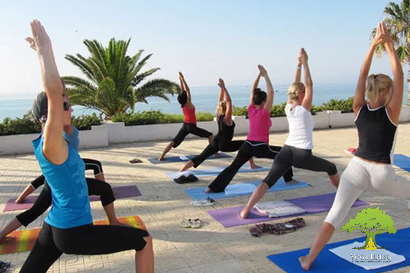 Гимнастика на растяжку йога